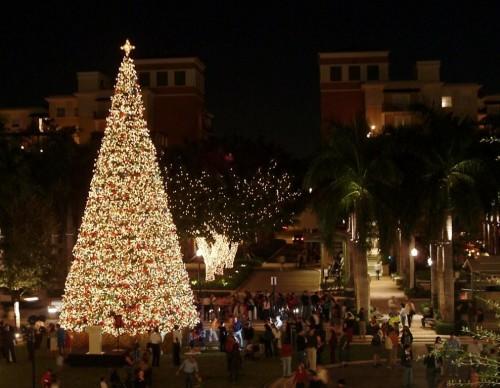 Christmas Tree Lighting in Miami, FL - Nov 19, 2009 5:30 PM | Eventful