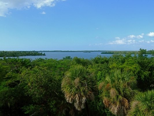 view from water tower cabbage key