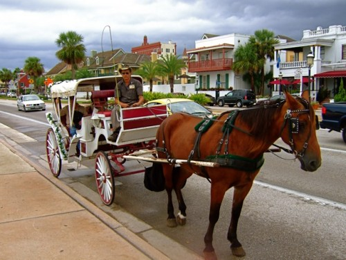 st. augustine horse-drawn carriage tour