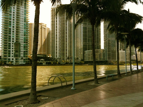 riverwalk mouth of miami river