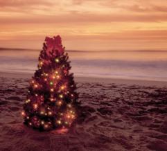 Why I Love Christmas in Miami - Miami Beach 411