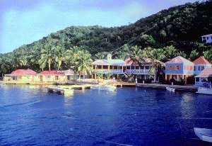 Visit Tortola in the Caribbean