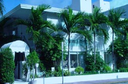 Loft Hotel on Collins Avenue