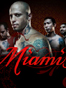 Miami Ink TV Show Review