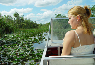 Everglades National Park Tour in Miami, Florida