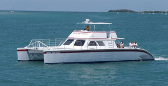 Everglades National Park, Miami City Tour and Biscayme Bay Cruise